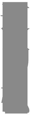 Die Feng Shui Methode Tao do Hang in chinesischen Schriftzeichen